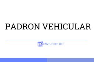 -PADRON-VEHICULAR--CERTIFICADO-DE-INSCRIPCION